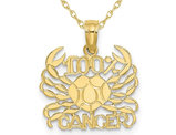 10K Yellow Gold 100% CANCER Charm Astrology Pendant Necklace with Chain